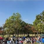 公園のフリーマーケット